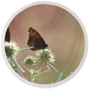 Butterfly Spring Nature Morning Scene Round Beach Towel