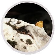 Butterfly Standing On Rock Round Beach Towel