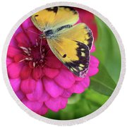 Butterfly Whispers Round Beach Towel