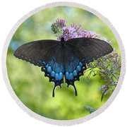 Butterfly Wish 1 Round Beach Towel