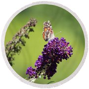 Butterfly With Flowers Round Beach Towel