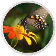 Butterfly With Orange Flower Round Beach Towel
