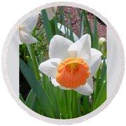 Button Daffodil Round Beach Towel
