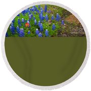 Hill Country Yucca Round Beach Towel