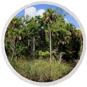 Cabbage Palms Along The Cotee River Round Beach Towel