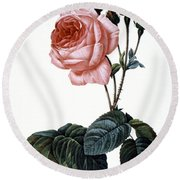 Cabbage Rose Round Beach Towel