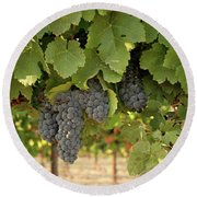 Cabernet Grapes One Round Beach Towel