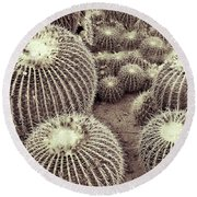 Cacti Community Round Beach Towel