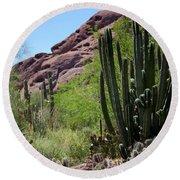 Cacti Garden Round Beach Towel