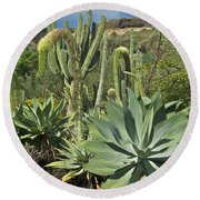 Cacti Of Koko Crater Round Beach Towel