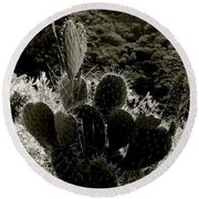 Cacti On Molokai Round Beach Towel