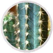 Cactus 3 Round Beach Towel