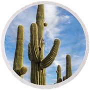 Cactus Arms Round Beach Towel