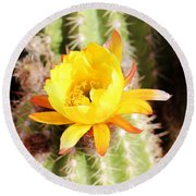 Cactus Bloom 033114e Round Beach Towel