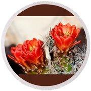 Cactus Bloom 033114m Round Beach Towel