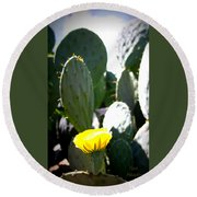 Cactus Bloom Round Beach Towel