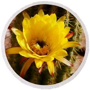 Cactus Bloom Yellow 050914a Round Beach Towel
