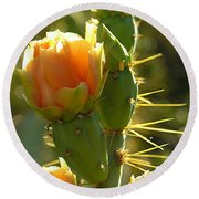 Cactus Buds Round Beach Towel