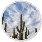Cactus Choir Round Beach Towel
