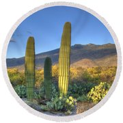 Cactus Desert Landscape Round Beach Towel