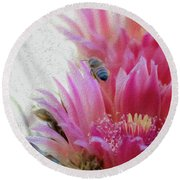Cactus Flower And A Busy Bee Round Beach Towel
