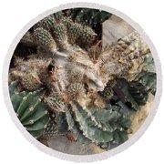 Cactus Fractals Round Beach Towel