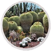 Cactus Galore  Round Beach Towel