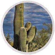 Cactus Home Round Beach Towel