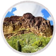 Cactus On The Mountainside Round Beach Towel