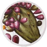 Cactus: Opuntia, 1613 Round Beach Towel