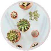 Cactus Pots Round Beach Towel