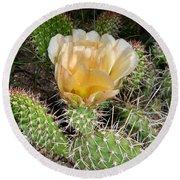 Cactus Rose Round Beach Towel