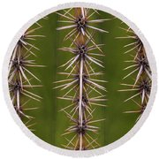 Cactus Spines Round Beach Towel