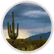 Cactus Sunset Saguaro National Park Arizona Round Beach Towel