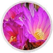 Cactus-thelocactus Macdowellii Round Beach Towel