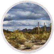 Cactus Valley Round Beach Towel