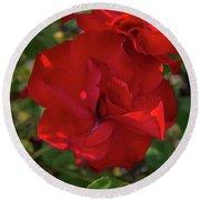 Caecilla's Rose Garden Round Beach Towel