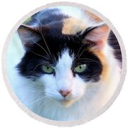 Calico 2 Round Beach Towel