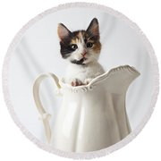 Calico Kitten In White Pitcher Round Beach Towel by Garry Gay