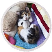 Calico Kitten On Towels Round Beach Towel by Garry Gay