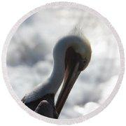 California Brown Pelican 1 Round Beach Towel