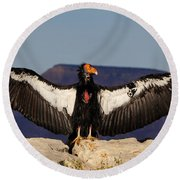 California Condor Round Beach Towel