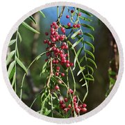 California Pepper Tree Leaves Berries I Round Beach Towel