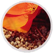 California Poppy And Scallop Shell Round Beach Towel