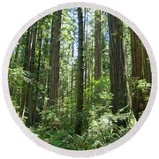 California Redwood Trees Forest Art Prints Round Beach Towel