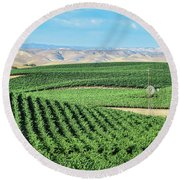 California Vineyards 1 Round Beach Towel