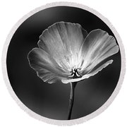 Californian Poppy Round Beach Towel