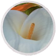 Calla In Paradise Round Beach Towel