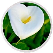 Calla Lily Closeup At Pilgrim Place In Claremont-california Round Beach Towel