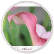 Calla Lily With White Border Round Beach Towel